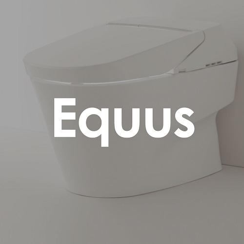 Equus de México